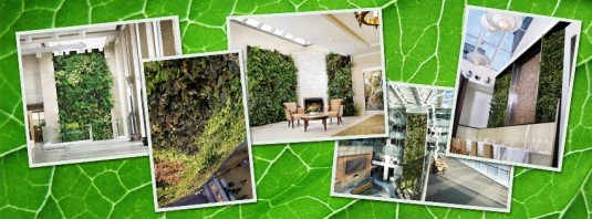 Facebook cover photo showcasing several living wall photos on a green leaf background.